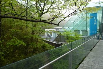 緑豊かな仙石原にある「ポーラ美術館」は、ガラスをふんだんに使った建築で、まるで森の中で絵画鑑賞をしているよう。館内も明るい展示で、魅力ある企画展示も行われています。