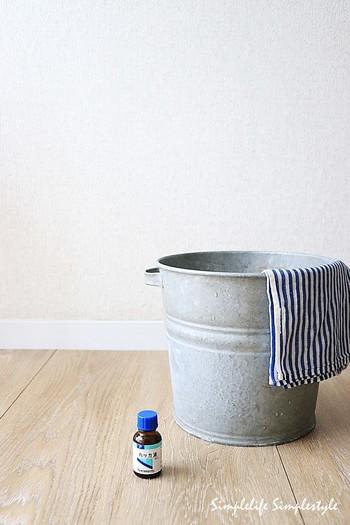ハッカ油は毎日のお掃除に数滴垂らすだけで爽やかな空間に。掃除はもちろん、水で希釈したスプレーボトルを作っておけば、ゴミ箱など臭いの気になる場所もすっきり。