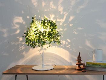 木漏れ日のような美しい光が拡散する読書灯です。一見するとランプには見えず、消灯していてもオブジェのように楽しむことが出来ます。これ一つでグリーンと照明どちらも取り入れられる一石二鳥のテーブルランプです。