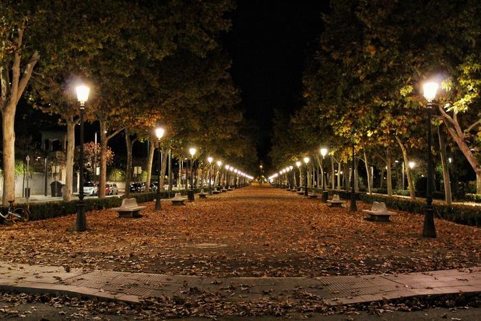 その、普段は「当たり前」だと思っているもののありがたみが、夜の街を幻想的にしています。普段は感じることのできない夜独特の幻想的な雰囲気で、非日常を身近で感じることができるのが夜散歩の魅力なのです。