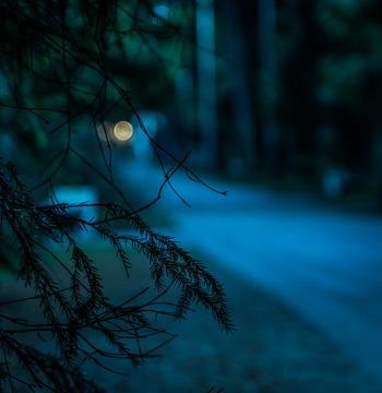 夜散歩はひとりになることができ、ゆっくりとしたときの中でじっくりと自分の心と対話ができます。そのため、普段は気づかなかった気持ちにも気づけることがあります。