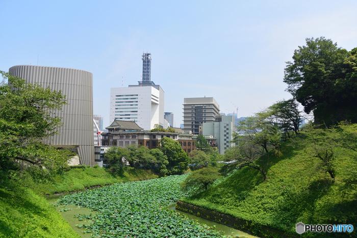 徳川家の将軍の居城、江戸城跡に建てられたのが、明治時代以降の天皇の住居となる皇居です。大手町や日比谷に囲まれた大都会のど真ん中にありながら、緑に囲まれた広大な敷地に、江戸時代以降の貴重な生態系がいまだ継承されている、特別な場所です。