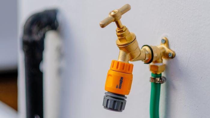 """水やりは、基本的に鉢土が乾いた時にするようにしましょう。 お水のやりすぎは球根を腐らせてしまいますからね。  とはいえ、水枯れはしやすいので、1回にあげる量は、鉢底からお水が出てくるくらいたっぷりで! ポイントは""""ゆっくり""""と水をあげること。一気にあげてしまうと土が充分に水分を吸う前に流れ落ちてしまいます。 また、同じ箇所に水をかけ続けるのではなく、数分間時間をあけ、数回に分けてまんべんなくかけてあげてください。"""
