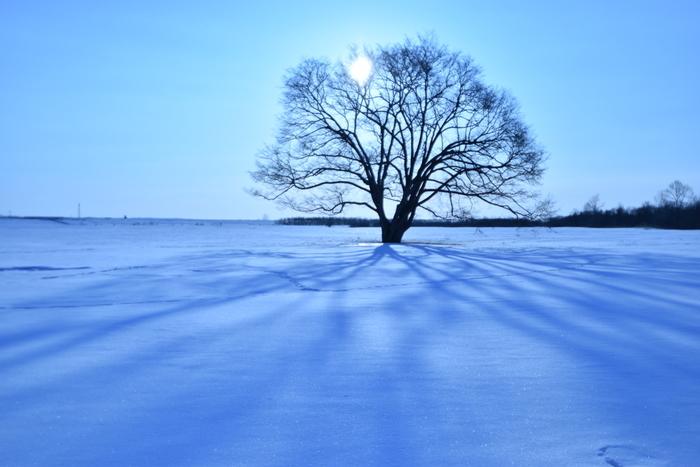 北海道の冬旅5選!【温泉】×【冬の体験】思いきり遊んで、カラダの芯まで温まろう