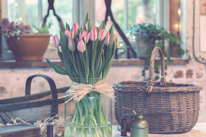 """ピンクのチューリップの花言葉は「愛の芽生え」「誠実な愛」です。 愛のはじまりのときめく恋といったらやはり""""ピンク""""が思い浮かぶ方は多いですが、同時に""""誠実な""""といった意味も含むのは、チューリップらしいですよね。"""