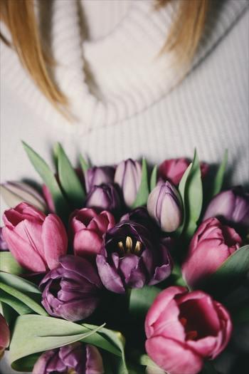 """チューリップの花束は色別にご紹介した花言葉をうまく活用すると、一緒に""""想い""""も伝えられる素敵な贈り物になります。女性にチューリップの花束をプレゼントする場合は、小花や他のお花も組み合わせると良いでしょう。華やかさや可愛らしさが増しますよ。  また男性にプレゼントする場合は、あえてチューリップだけで統一するのがオススメです。シンプルで控えめな印象の花束は、男性が持ち歩いていても違和感がありません。"""