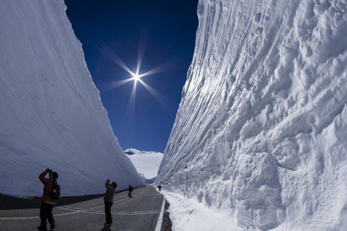 富山の有名観光スポットの一つ「立山黒部アルペンルート」。富山県側の「立山駅」から長野県側の「扇沢駅」まで乗り物を乗り継ぎ、雄大な自然を満喫できる観光ルートです。雪が溶けて暖かくなる春ごろには、左右を雪に囲まれた「雪の大谷」が楽しめます。
