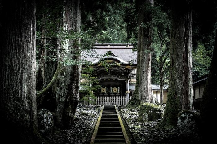 1244(寛元2)年、道元禅師によって開創された「永平寺」は、出家参禅の道場です。10万坪もある境内には、七堂伽藍を中心に70余りの殿堂楼閣が建ち並び、樹齢700年とされる老杉に囲まれ静寂な空間は、出家道場にふさわしい神秘的な雰囲気が漂っています。