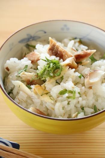 アジの開きの身をほぐして、ご飯とあえるだけの混ぜご飯。すごく簡単ですが、大葉がほどよいアクセントになって、食がすすみますよ*  こちらのレシピでは塩を追加していますが、干物自体に塩けがあるるので、味見をして足すかどうかを決めましょう。大葉以外に、みょうがなどの薬味をたっぷりのせても美味しいです。