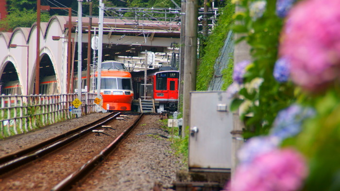 時間がないなら、日帰りでいい。【箱根観光】1度は行きたいおすすめスポット