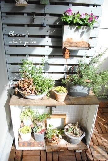 きれいに整えるのではなくて、色々な素材、形、大きさの鉢植えをランダムに置くのが北欧風です。