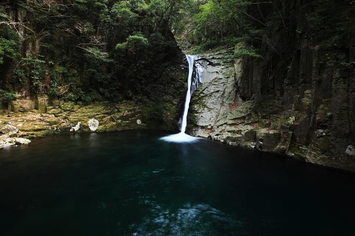 赤目温泉は、赤目四十八滝の入口に湧く温泉で、1967年に赤目温泉最初の温泉施設が開湯したのが始まりといわれています。地底1,000mより噴出したアルカリ単純温泉は、美肌効果の高い良質な温泉です。
