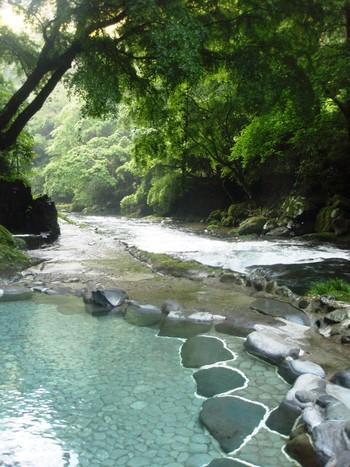 こちらは早咲きの桜で知られる河津町に位置する大滝(おおだる)温泉。「天城荘」には伊豆最大級の大滝が眺められる露天風呂があり、映画『テルマエ・ロマエ』や『ノルウェイの森』のロケ地にもなりました。