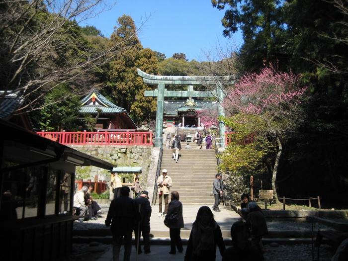 久能山東照宮を訪れるなら、周辺にも立ち寄ってみてください。 「日本平→ロープウェイで移動→東照宮参拝→石垣いちご狩り体験」。これが静岡の自然と食をたっぷり味わえる人気のモデルコース。ランチには静岡名物桜エビや釜揚げシラスを試してみて。
