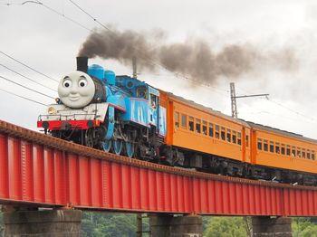 電車好きなら大井川鐵道のSL列車は見逃せません!毎年6月から期間限定で「きかんしゃトーマス号」が登場します。周辺の景色も美しく、テンションが上がりますよ。