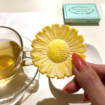 こちらの「菊花せんべい」は唐菊形のおせんべいに、生姜砂糖がかけられています。上品な見た目と味は和菓子ならではです。