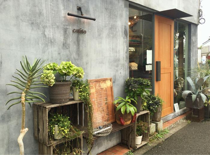 西荻窪駅北口から徒歩10分。コンクリートの壁と植物で彩られたオシャレな外観が印象的な「コチト」は、ご夫婦で営まれているお花とお菓子のお店です。