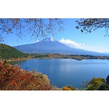 やはり静岡といえば、見過ごすことが不可能な富士山。間近に見る端麗な姿は圧巻の美しさです。田貫湖では山頂に太陽が昇り、その光景が湖面に反射する「ダブルダイヤモンド富士」を見ることができます。