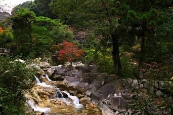 湯の山温泉郷の歴史は古く、養老2年(718年)に発見されたともいわれ、傷ついた鹿が傷を癒したという伝説から「鹿の湯」とも呼ばれています。アルカリ性ラジウム泉の泉質で、美肌の湯として知られています。