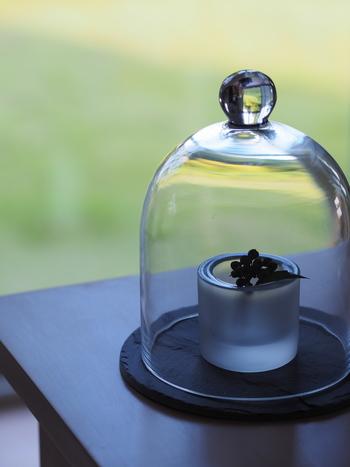 上からガラスのドームをかぶせてあげるだけで、こんなに雰囲気のある空間に。ホコリを避けたいときにもおすすめのディスプレイ方法です。