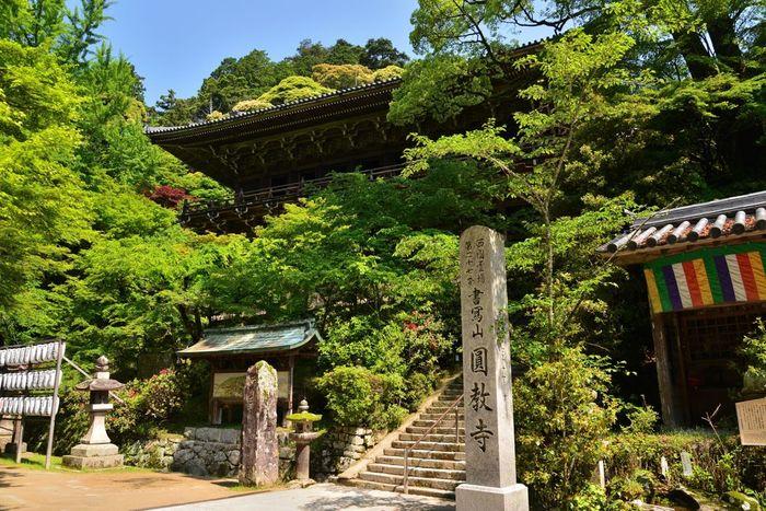 映画や大河ドラマなどのロケ地としても有名な「書写山円教寺」。また西の比叡山とも呼ばれ、多くの人に親しまれています。中に入ると国や県の重要文化財に指定されているお堂があり、樹齢数百年の木々に囲まれた荘厳な雰囲気には圧巻の一言です。