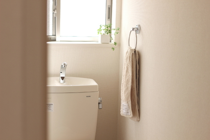 トイレに緑はありますか?  観葉植物が一つあるだけで、殺風景なトイレも爽やかな空間に…! さらに風水的にも嬉しいことがいっぱいなんです。  トイレにおすすめの植物や、センス良くディスプレイするアイデアなど、おしゃれなトイレ空間を演出する『観葉植物』の選び方をご紹介します。