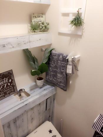 観葉植物にインテリアをプラスして並べてあげることで、もっとおしゃれな空間に。タオルやトイレットペーパーのカバーなど、統一感のある小物でそろえてみるのも素敵ですね。
