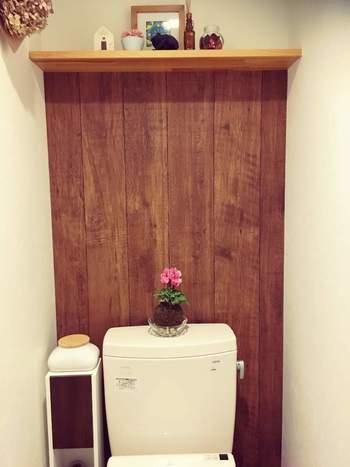 トイレは狭くて植物を置く場所がない…という時には、トイレタンクの上がおすすめ。ちょこんと苔玉を乗せるだけで、こんなにかわいらしいインテリアに!