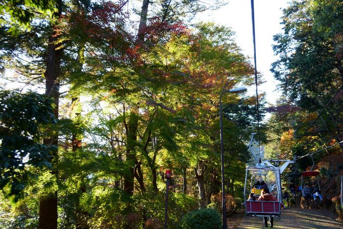 帰りはゴンドラで降りるのが、お楽しみの1つ。自然の森の中をゆっくりと景色を眺めながら、下山できます。