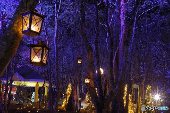 冬に行われるキャンドルナイト。 幻想的な空間は、別の世界に紛れ込んだようです。