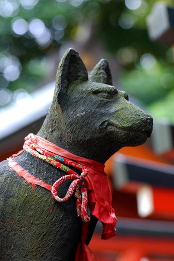 根津神社には、人々の願いをかなえてくれるといわれる『願掛けカヤの木』や、穀物の女神である倉稲魂命(ウカノミタマノミコト)が祀られる『乙女稲荷』『駒込稲荷』があり、どれも縁結びのご利益がいただけるパワースポットとなっています。