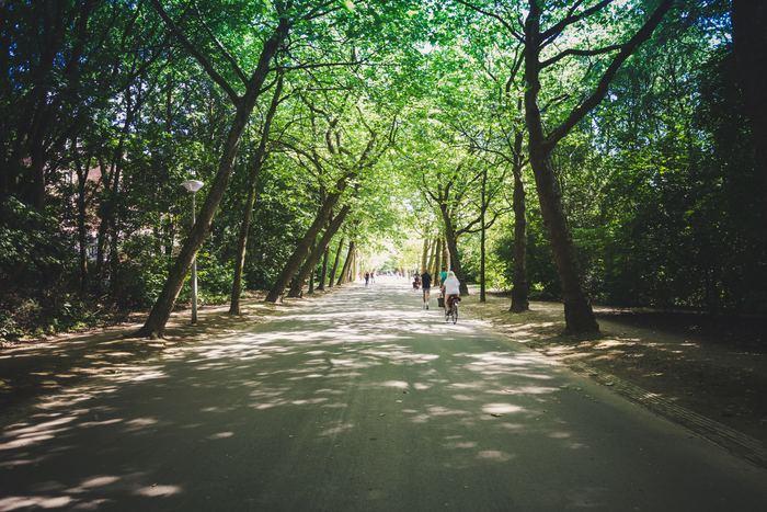マストではありませんが、やっぱり近くに大きな公園があることは、心と身体の健康のために良いことです。 家の近所で心地よい散歩コースやランニングコースを見つけられると、住んでいる町がますます好きになれそうです。