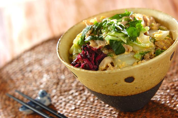 白菜と豚肉をお出汁でコトコト煮込んで卵でとじた「白菜の卵とじ丼」。白菜はビタミンCも豊富。優しいお出汁との相性も抜群の優しい丼です。