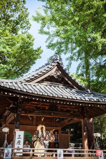 江戸三大祭のひとつにもなっている例大祭は、9月中旬の土日に行われ、文京区指定の無形文化財に指定されている三座ノ舞や浦安舞も見ることができます。 毎年3万人ほどの人が集まり、100店ほどの露店が出て賑わいます。