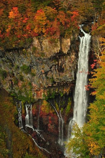 上からでも滝が流れ落ちる音は迫力があります。滝つぼをのぞき込むと、思わず引き込まれてしまいそう。