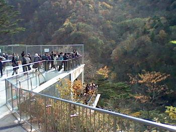 滝を上から眺めるなら、駐車場裏手にある無料展望台がおすすめです。2階建てになっていて、フェンス越しに滝を見ることができますよ。