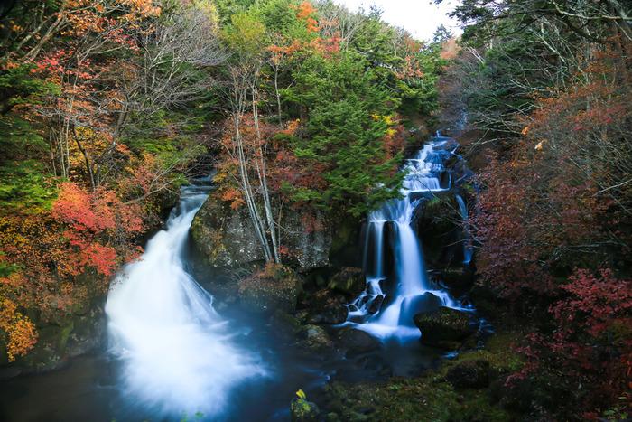 「竜頭(りゅうず)の滝」は、湯ノ湖から中禅寺湖に流れる湯川が造る滝です。滝つぼの近くで2つに分かれる流れが、まるで竜の頭のように見えることから名づけられました。全長は210メートルで、階段状に流れ落ちる様子は迫力満点!新緑や紅葉の季節は、さらに美しさを増します。JR・東武日光駅から湯元温泉行きのバスに乗り1時間ほど、「竜頭の滝」停留所で降りてすぐのところにありますよ。
