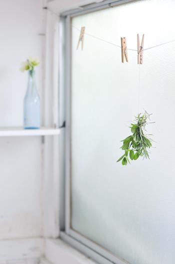 暗くて湿気が多いイメージの浴室ですが、こうした環境を好む植物なら鉢植えで育てることもできます。ただし、日光と風が全く入らないタイプのユニットバスの場合は、フェイクグリーンやハーブのスワッグなどを使うのがおすすめ。お好きなハーブを束ねてハーバルバスにすれば、香りのリラックス効果も得られます。