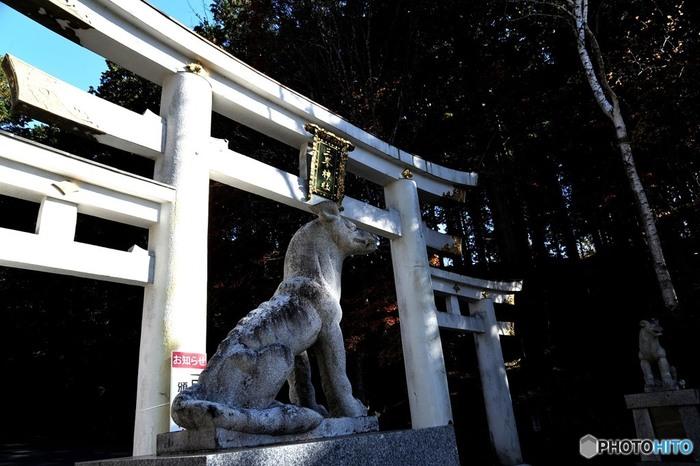 標高1,100メートルにある「三峯神社」は、関東屈指のパワースポットとしても知られています。境内の入り口には、日本で7つしかない三ツ鳥居は、大きな鳥居の左右に、小さな鳥居があるのが特徴です。