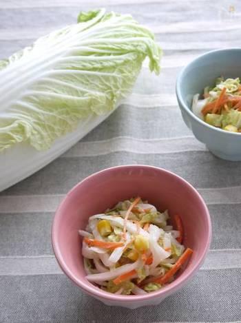 旬の新鮮な白菜は、生で食べるのもおすすめ。普通はキャベツで作るコールスローを白菜で代用してみてはいかがでしょう?シャキシャキ食感のコツは、繊維に沿って縦に切ること。ツナがうまみを出してくれます。