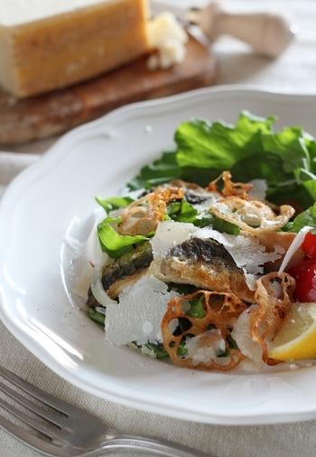 イワシ、パルミジャーノ、ルッコラといった個性の強い素材を合わせつつも味の相性がよく、レンコンの食感もたのしいサラダです。