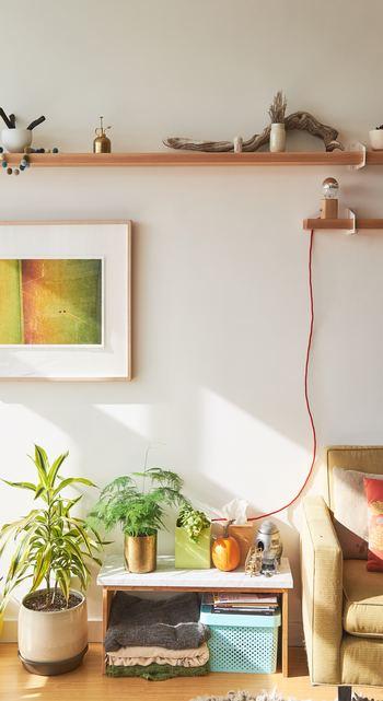 お部屋の中にグリーンがあると、雰囲気もまた変わります。今回は、風水の基本ポイントから、部屋別の置き方、運気アップにちなんだ観葉植物の種類など、幅広くピックアップしました。気になる植物を探してみてくださいね♪
