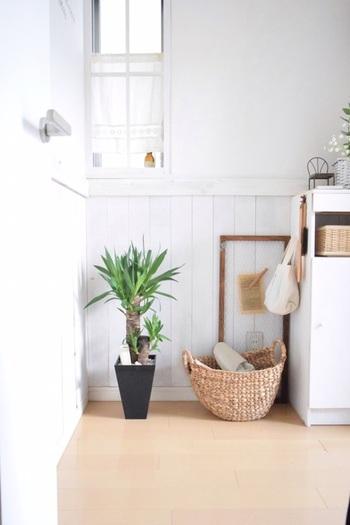 玄関は、運気を招き入れるための入口♪早いタイミングで整えておきましょう。トイレと同じように、清潔感と明るさに気を配ることがポイント。日頃からこまめに掃除すると良いですよ。靴は出しっぱなしにせず下駄箱にしまって、照明を明るくしたり、玄関マットを敷いたり。花や絵を飾るのもおすすめです。