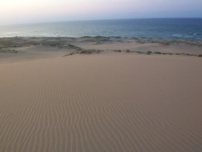 サラサラとした砂浜なので、風が吹いた後は、このような風紋を楽しむことも。観光客が少ないタイミングを見計らって足を運んでみると、観光名所とは思えないほど、異世界の地に降り立ったような気分を楽しめますよ。  ※筆者撮影