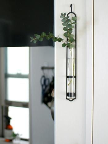 細長い壁を飾るのにぴったりな試験管ベース。剪定した小さなユーカリを爽やかに飾れば、通るたびに心地よい香りを楽しめます。