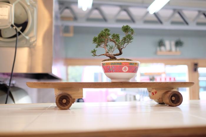 おしゃれな店内には和風な盆栽に洋風な木製のスケートボードやサボテンなど店主の遊び心とセンスが光ります!