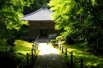 松島を観光するときは、ぜひ早い時間から訪れて色々な名所を巡ってみてください。こちらの写真は「円通院」。新緑や紅葉など、季節ごとに多彩な表情をみせる庭園の美しさと、縁結びにご利益があることで知られています。また、伊達政宗公ゆかりの国宝「瑞巌寺」、迫力のある大型オルゴールの演奏が楽しめる「オルゴール博物館」など、見所がたくさんあります。