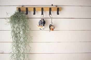 こちらのお宅では、100円ショップのアイテムを組み合わせてDIYしたフックに鍵をハンギング収納。他にも、帽子やバッグなどを気軽に掛けて収納することができます。