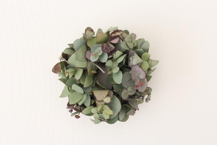 こちらはユーカリの葉をぎゅっと集めたコンパクトなリースです。白い壁によく映えます。さりげないアクセントがほしいときにおすすめです。