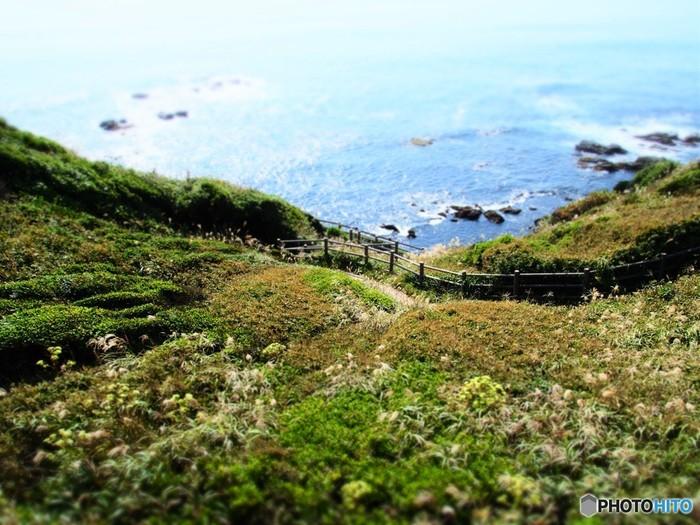 城ヶ島は、三浦半島の南端に位置する神奈川県最大の自然島。 鎌倉時代より親しまれてきた観光地です。美しい景色を望めるポイントや、自然が作り出した独特の地形など、大自然を思いっきり満喫できる、魅力的なスポットが沢山あります。 広い芝生の公園や絶壁と岩場の海岸、美しい灯台、雄大な景色を望むハイキングコースなど、今回は、そんな城ヶ島のおすすめ観光スポットをご紹介したいと思います。